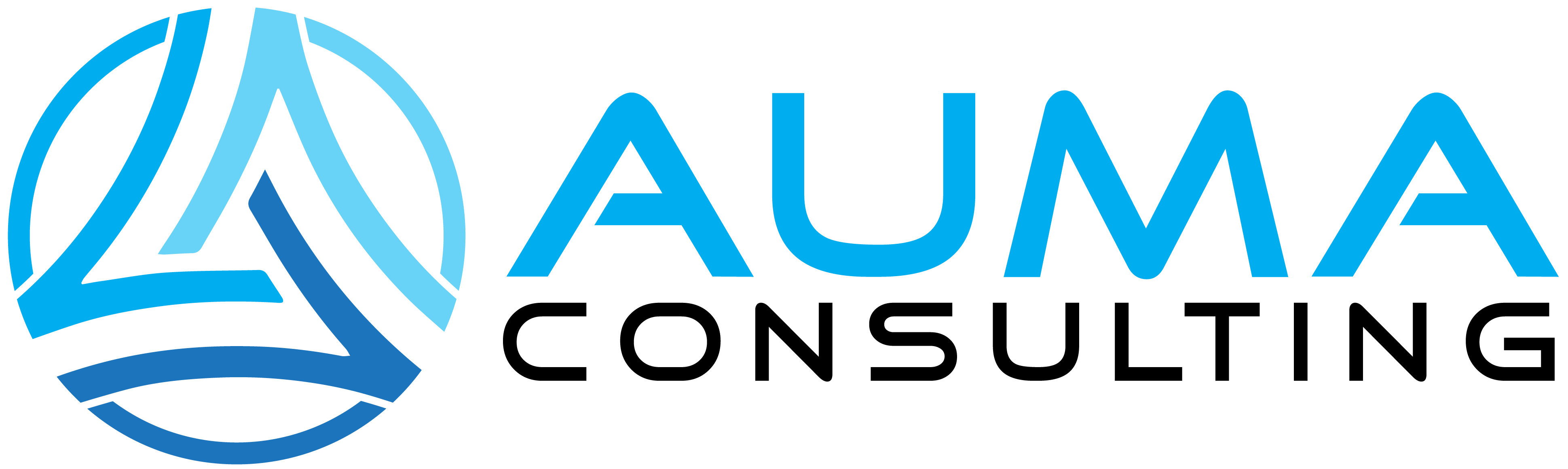 auma-consulting.com